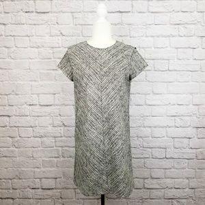 Zara Basic black white short sleeve shift dress